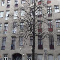 my-eye-in-berlin-report-marco-barbiero-1